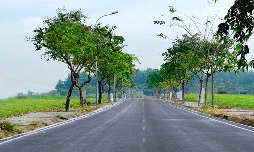 Người Việt mê đất, gom mua đất bằng mọi giá dù phải sống thiếu thốn, cõng thêm nợ nần vì tin rằng có đất là có hy vọng đổi đời